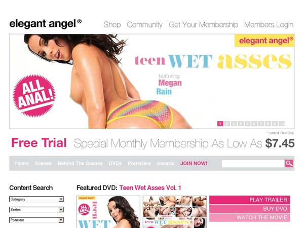 Elegant Angel Active Password