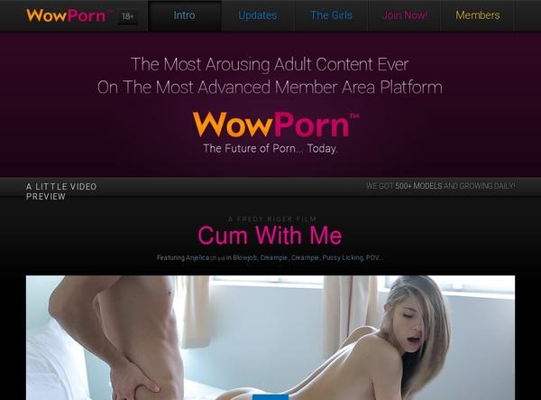 Wow Porn Tube